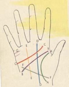palm-lines