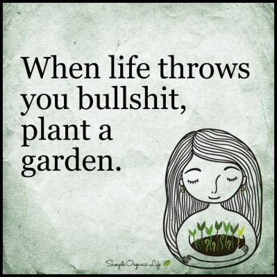 bullshit plant a garden.JPG